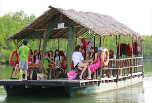 Kota Kinabalu Day Tour  Mangrove River Cruise